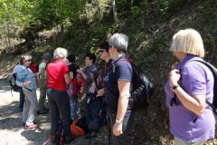 Maibummel 2013: Von Oberburg nach Affoltern